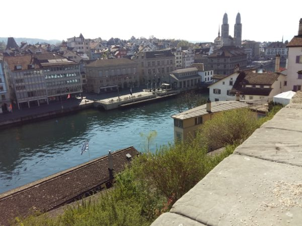 Lindenhof view