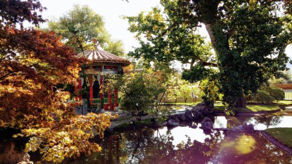 chinagarten6