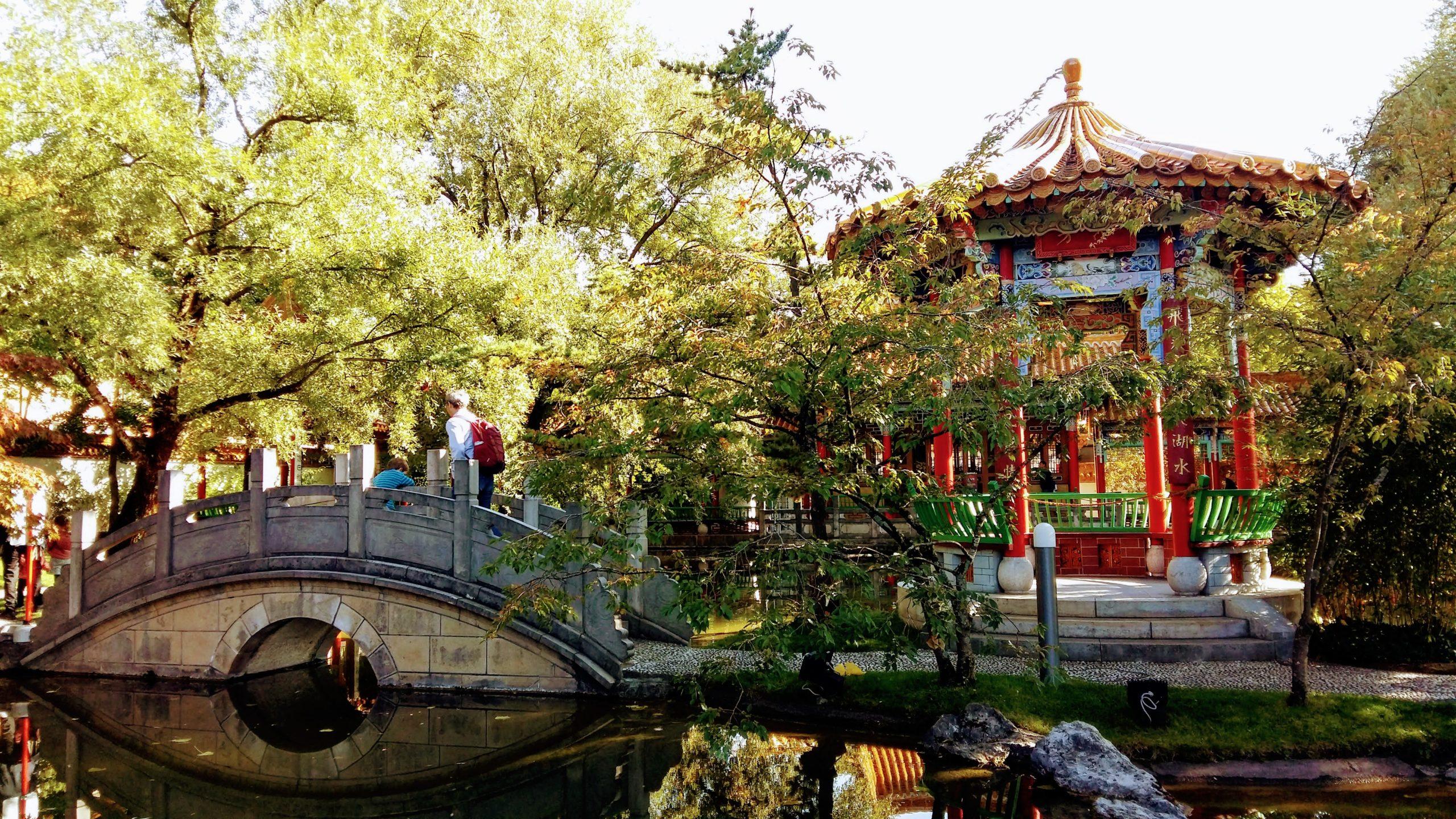 chinagarten-eye
