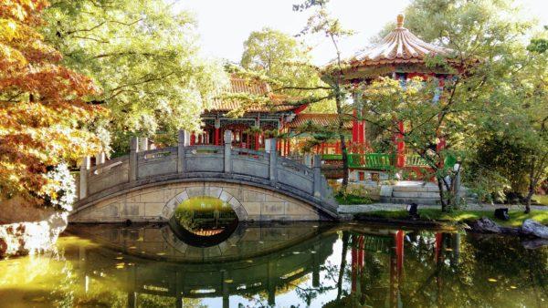 chinagarten4